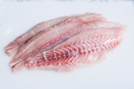 Yellowtail Snapper Fillet For Sale Online