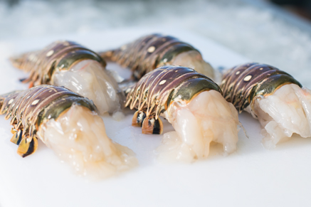 Fresh Frozen Florida Lobster Tails For Sale