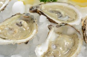 Oysters 2 Doz
