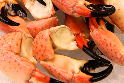 Jumbo Stone Crab Claws Available for purchase online